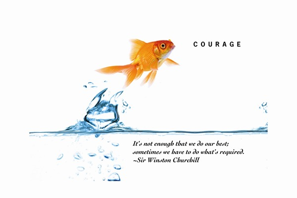 Courage to be Bold