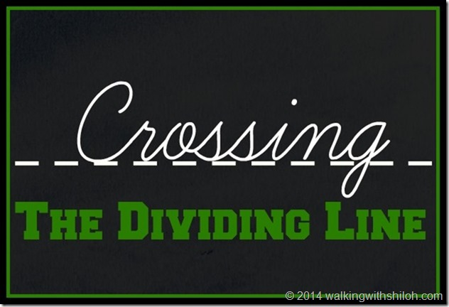 crossingthedividingline[8]