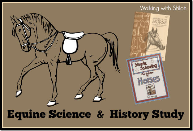 Equine Science & History Study