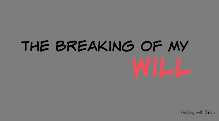 The Breaking of My Will