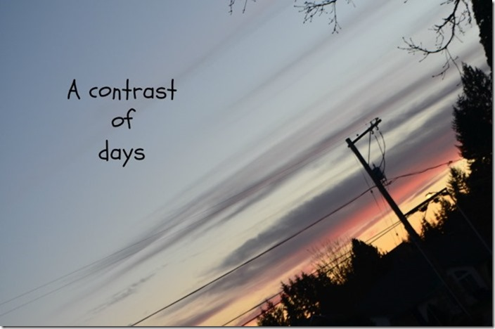 Contrast of Days